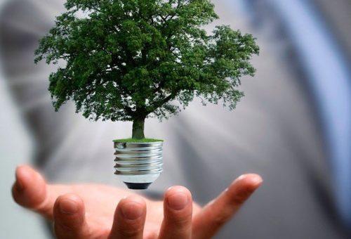 direito-ambiental-1000x480